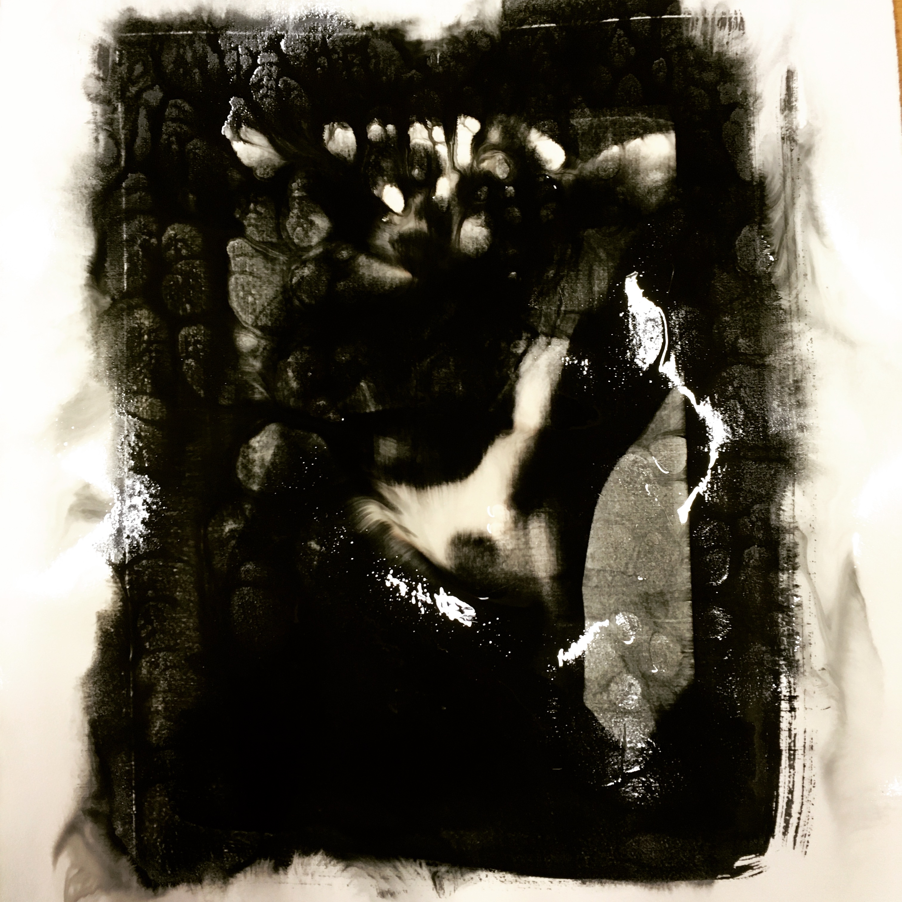Niels Erhardsen Darkroom Work